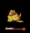 Gropher