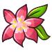 Gracidea Flower