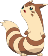 Furret anime model