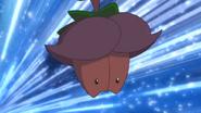 Cherrim Overcast anime
