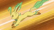 Leafeon anime