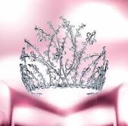 Couronne de Miss France 2006