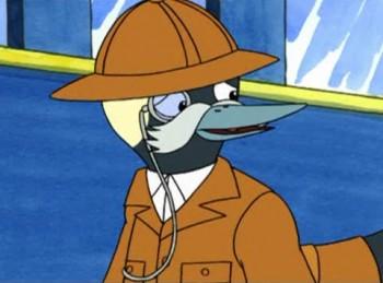 Professor bufflehead