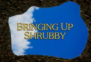 Sunny Patch Bringing Up Shrubby Title