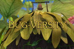 Sunny Patch Bug-Versity
