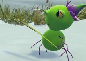 Sunny Patch The Befuddled Butterfly