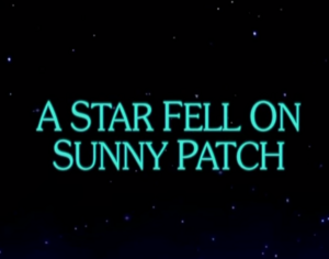 Sunny Patch A Star Fell on Sunny Patch