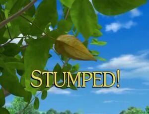 Sunny Patch Stumped!