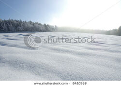 Stock-photo-snow-covered-landscape-with-a-big-field-and-a-forest-behind-6410938