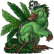 Overgrowth aetra