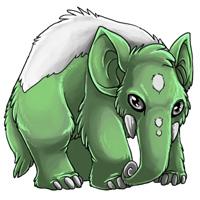 Swamp eledon