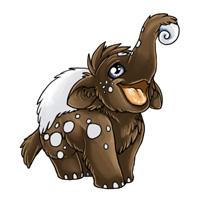 Baby eledon