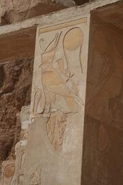 S F-E-CAMERON Hatshepsut Hawk