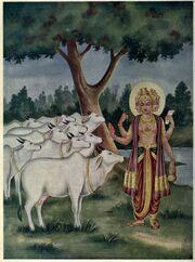 Brahma gives cows a boon