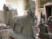 GD-EG-Caire-Musée091