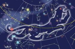 Constelacion tigre blanco