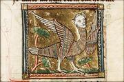 Harpia medieval