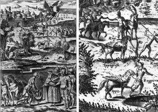 La imagen representa numerosas escenas con una criatura mitad caballo y mitad ave.