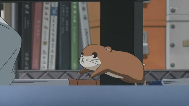 File:Chikubi Content.jpg