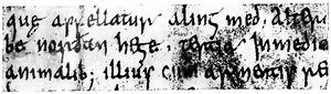 Angelsächsische Schrift RdGA Band 1 Tafel 05-05