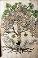 Verwandtschaftsbaum Europeana Uni Graz 16392.jpg