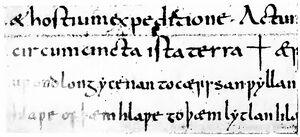Angelsächsische Schrift RdGA Band 1 Tafel 05-08