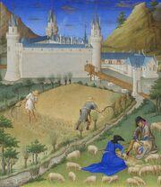 Stundenbuch Herzog von Berry 1416 Juli