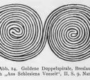 Doppelspirale
