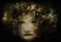 Ghost of Autumn by Simone Stefanini, 2009-09-26.jpg