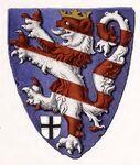 Wappenschild Konrads von Thüringen 1234, trachtenkunstwer02hefn Taf.116A