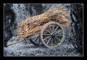 Thatchers cart
