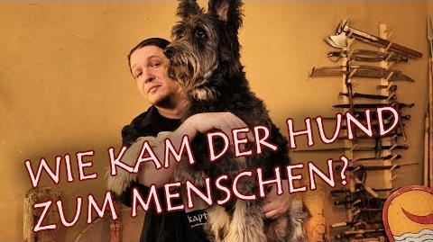 Wie kam der Hund zum Menschen - Die Domestikation des Hundes