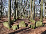 Hünenbetten von Grundoldendorf