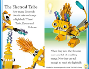 Electroids book page