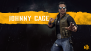 Johnny Cage Hero Art