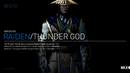 The Fighting Variations of Raiden 1