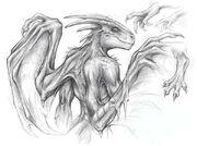 Dragon TF by Childofdune