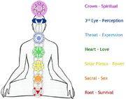 7-chakras-in-the-body-symbols-and-meaning-1024x810-meditationgongs.net