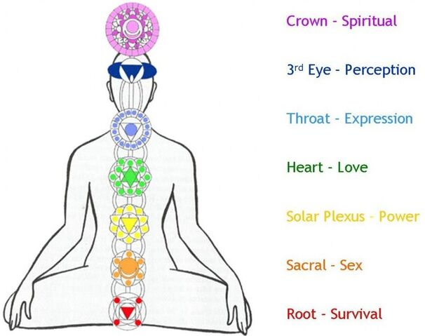 File:7-chakras-in-the-body-symbols-and-meaning-1024x810-meditationgongs.net .jpg