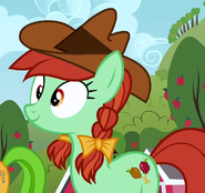Candy Apples ID S3E8