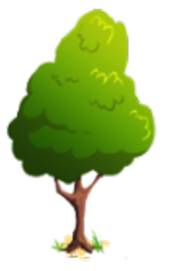 Young peridot tree