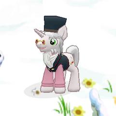 Distinguished Pony