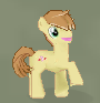 Facebook the shetland pony