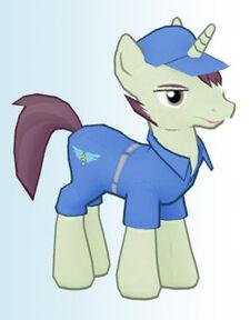 Contractor pony1