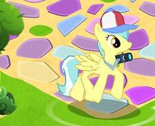Photographer pony