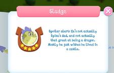 Sludge info