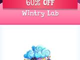 Wintry Lab