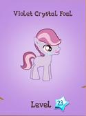 Violet Crystal Foal Store Locked