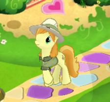 Safari pony