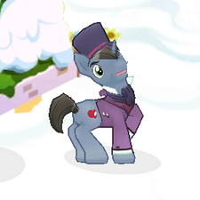 Dapper Pony